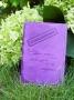 """Обложка на паспорт """"Гражданочка"""" в стихах (фукс) 14-03-10"""