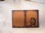 "Обложка на паспорт ""Че Гевара"" (2) (печать) 14-18-02"
